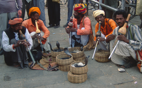India_snake_charmers