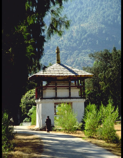 Bhutan_HUTAN81