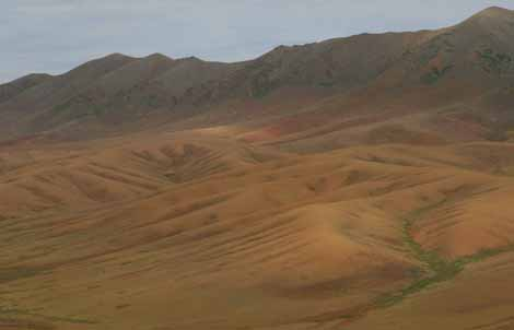 Mongolia_331.2_Gb