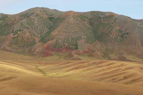 Mongolia_609_hs