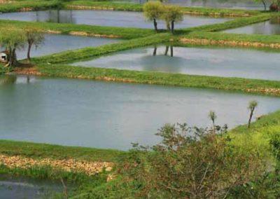 NorthKorea_073_trout_farm