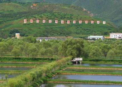 NorthKorea_087_sign_on_hill