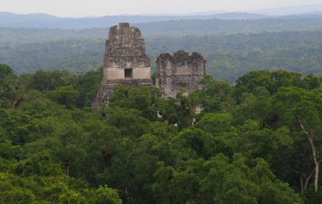 guatemala-405 Tikal, surrounded by dense jungle