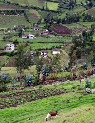 Ecuador_hilside_1953
