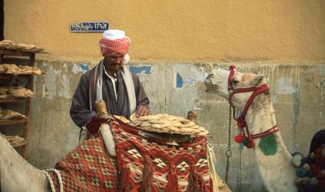 Egypt_38