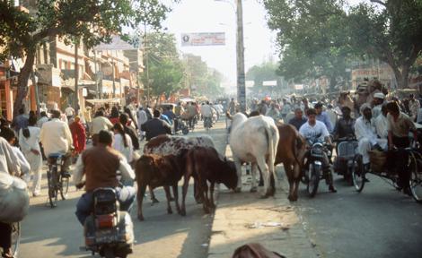 India_street