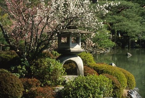 Japan_pagoda
