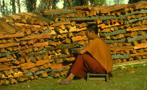 Laos_piling_wood