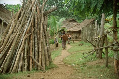 Laos_village