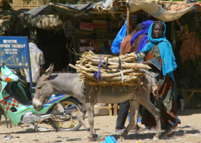 Mali_938_m_woman_and_donkey