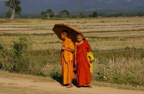 Myanmar_401_novice_monks