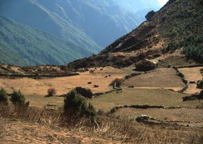 Nepal_valen_on_trek
