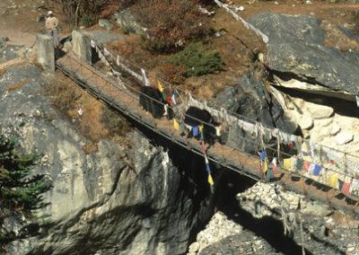 Nepal_yaks_crosing_bridge