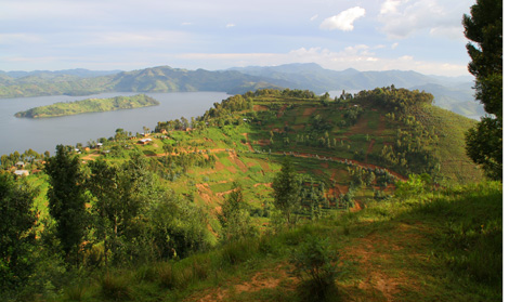 Rwanda_253_r_hilsides