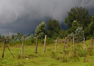 Rwanda_256_r_fence