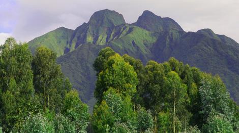 Rwanda_908_r_mountains