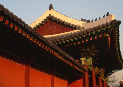 S_Korea_rooftop