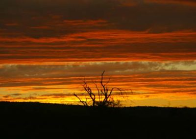 SouthAfrica_149_sunset