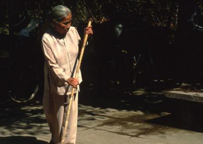 Vietnam_sweeping